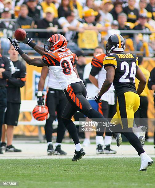 Chad Ochocinco of the Cincinnati Bengals makes a catch ahead of Ike Taylor of the Pittsburgh Steelers at Heinz Field on November 15 2009 in...