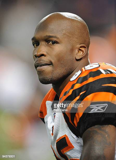 Chad Ochocinco of the Cincinnati Bengals pauses during warmups at an NFL game against the Minnesota Vikings at the Mall of America Field at Hubert H...