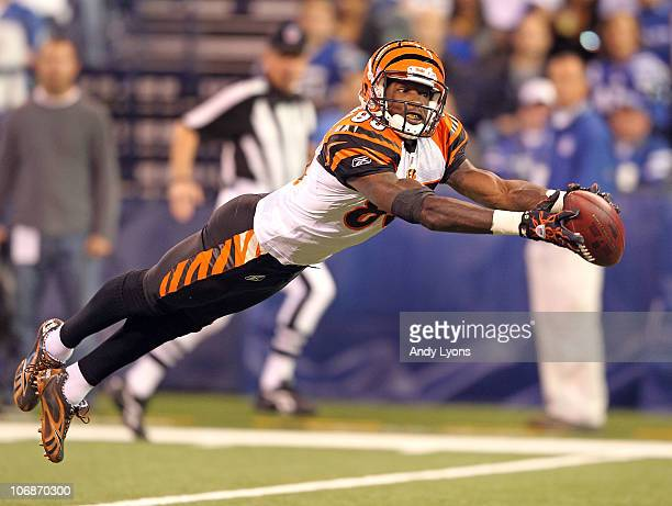 Chad Ochocinco of the Cincinnati Bengals reaches for a pass during the Bengals 2317 loss to the Indianapolis Colts in the NFL game at Lucas Oil...