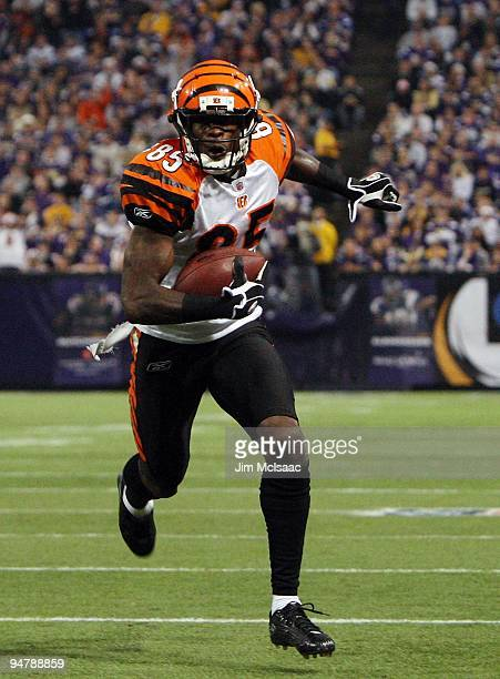 Chad Ochocinco of the Cincinnati Bengals runs in a touchdown against the Minnesota Vikings on December 13 2009 at Hubert H Humphrey Metrodome in...
