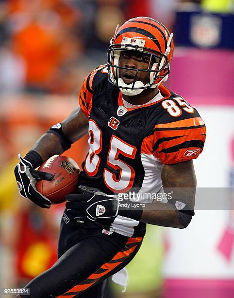 Chad Ochocinco of the Cincinnati Bengals scores a touchdown during the NFL game against the Chicago Bears at Paul Brown Stadium on October 25 2009 in...
