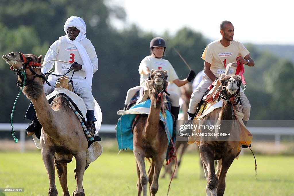 Chadian Hissein Wiledah, French Clotilde Wibaux and Franco-Moroccan Glif Nanir ride camels during a French Cup of camel races on August 10, 2014 on the horserace track of La Chartre-sur-le-Loir, western France. Unusual in these latitudes, eight dromaderies that have never seen the desert, took part in two races of 1000 meters.