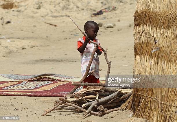 N'DJAMENA CHAD JUNE 22 A Chadian kid carries branches of tree at a slumdog of N'djamena Chad on June 22 2015 Referred to as the 'Dead Heart of...