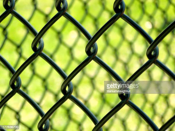 Chain Link on green
