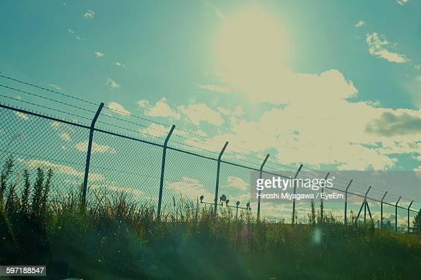 Chainlink Fence On Grassy Field During Sunny Day