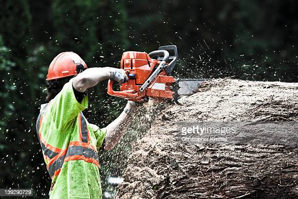 Chainsaw and sawdust