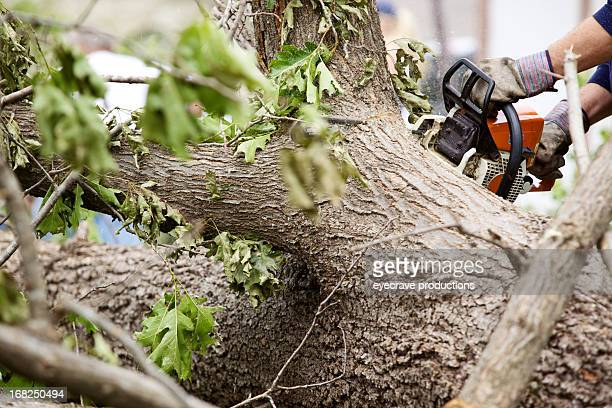 chainsaw cutting through fallen tornado debris