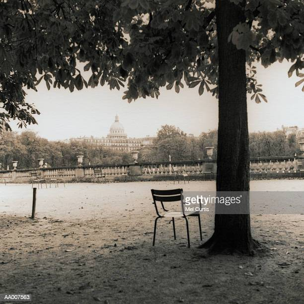 Chair by a Tree in Luxembourg Gardens in Paris