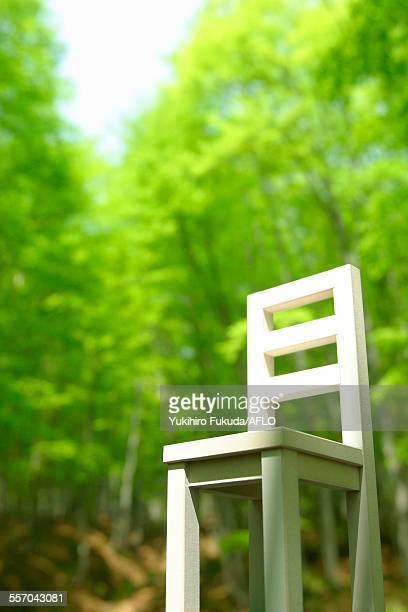 Chair in nature