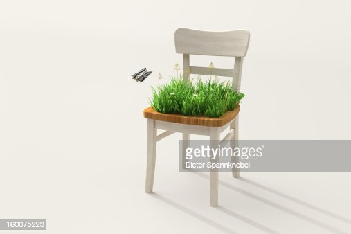 Chair seat with green grass, flowers and butterfly : Stock Photo