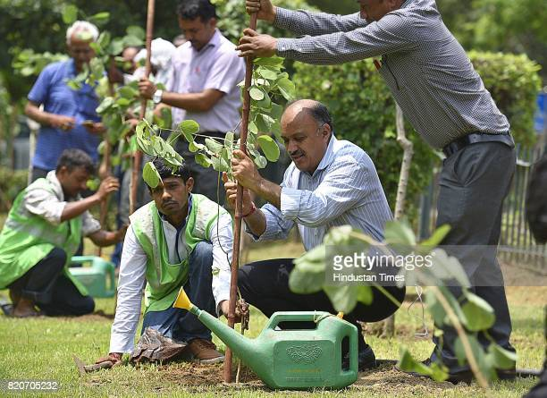 Chairman Naresh Kumar plants a sapling at Ravinder Nagar on July 22 2017 in New Delhi India The New Delhi Municipal Council roped in school children...