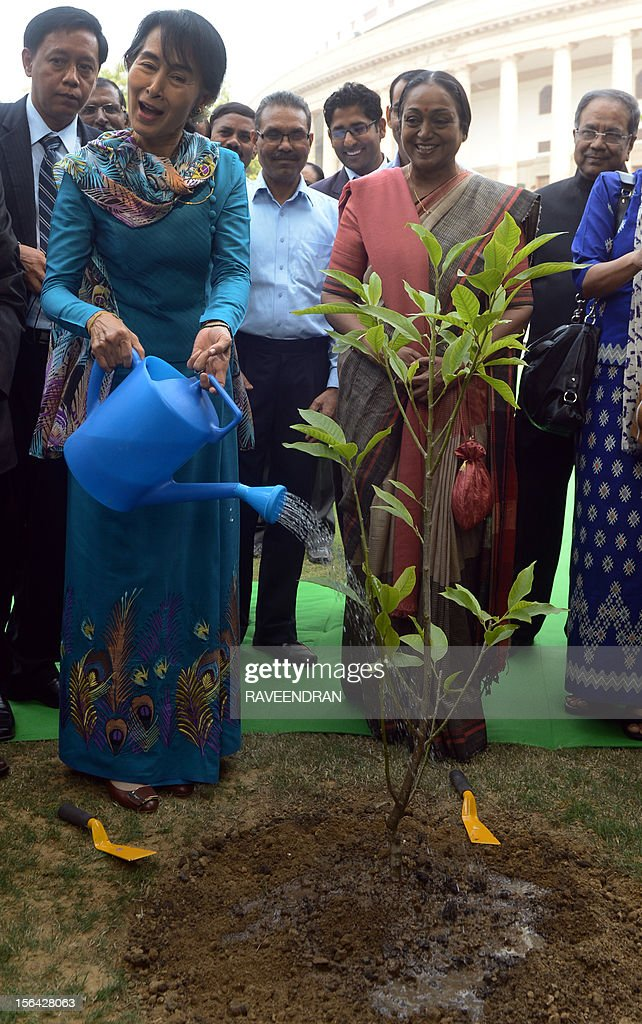 Chairperson and Oppostion leader of The National League for Democracy of Myanmar, Aung San Suu Kyi (2L) smiles as she plants a Malinolia Grandiflora tree at Parliament House in New Delhi on November 15, 2012, ahead of a meeting with Speaker of the Indian Parliament Meira Kumar. Suu Kyi is in India for a seven day visit. AFP PHOTO/RAVEENDRAN
