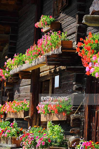 Chalet in bloom in CHAMONIX