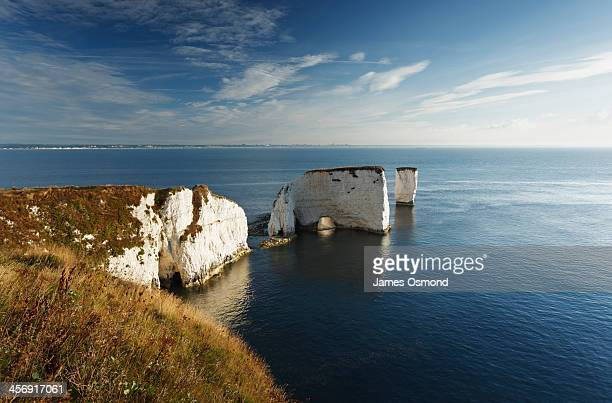 Chalk cliffs and sea stacks
