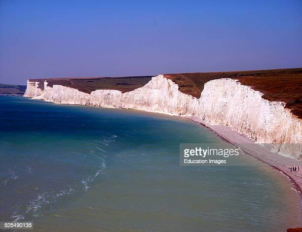 Chalk cliffs near Beachy head close to Eastbourne East Sussex England