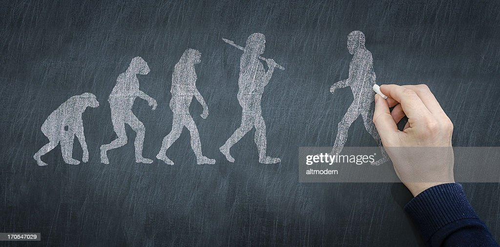 Chalkboard illustration of progression of evolution