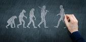 Chalkboard illustration of progression of evolution