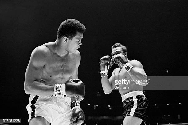 Challenger Cleveland Williams holds up his fists to champion Cassius Clay's head during first round action Clay won by a third round TKO to retain...
