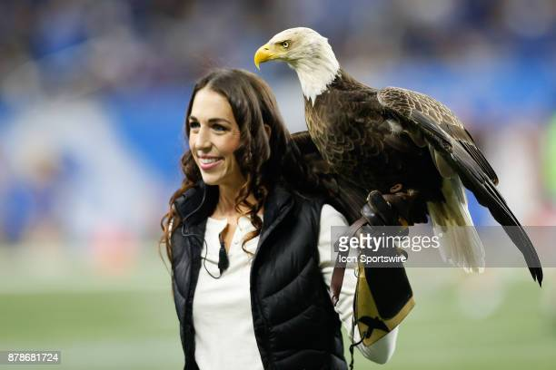 Challenger the bald eagle that flew around the stadium during the playing of the national anthem sits on its handler's arm prior to the start of the...