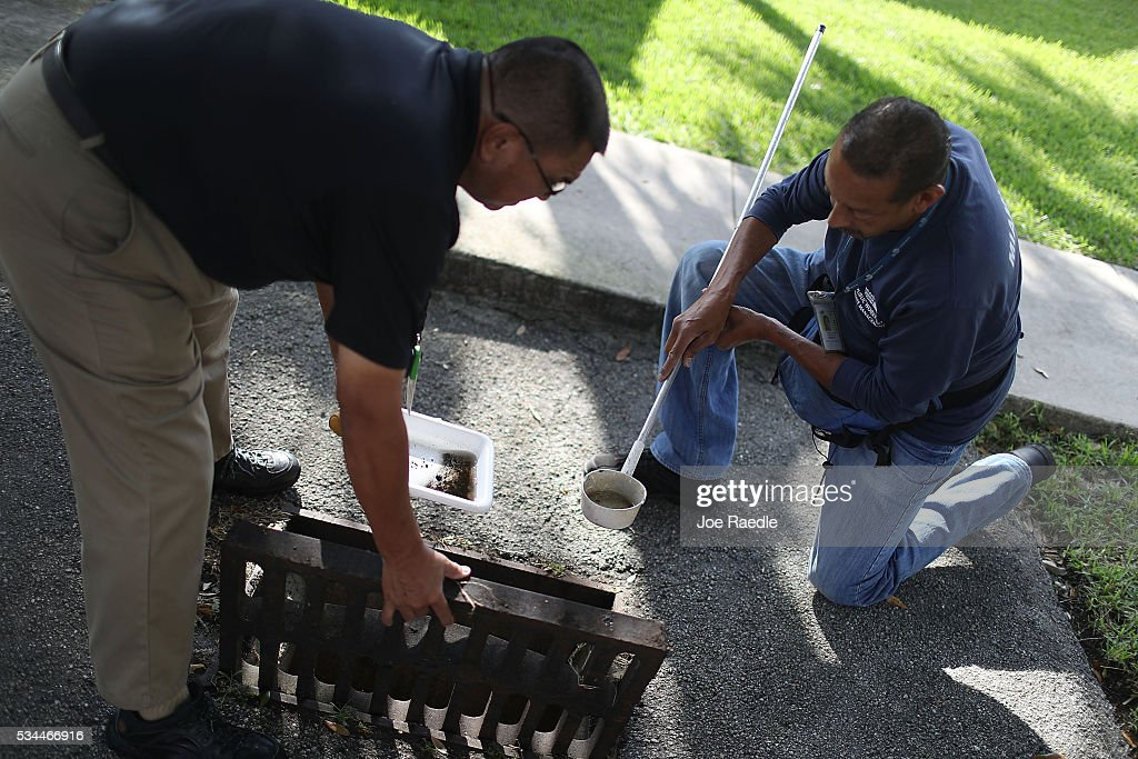 Chalmers Vasquez, Mosquito Control Operations Manager, (L) and Larry Smart, a Miami-Dade County mosquito control inspector, look for signs of mosquito larva in the dipper used to take a sample of water found in a drainage ditch as they work on eradicating them as the county continues to be proactive in fighting a possible Zika virus outbreak on May 26, 2016 in Miami, Florida. Florida Health officials indicate the statewide total of people infected by the disease is 158 with all of Florida's cases being acquired by people traveling outside the country.