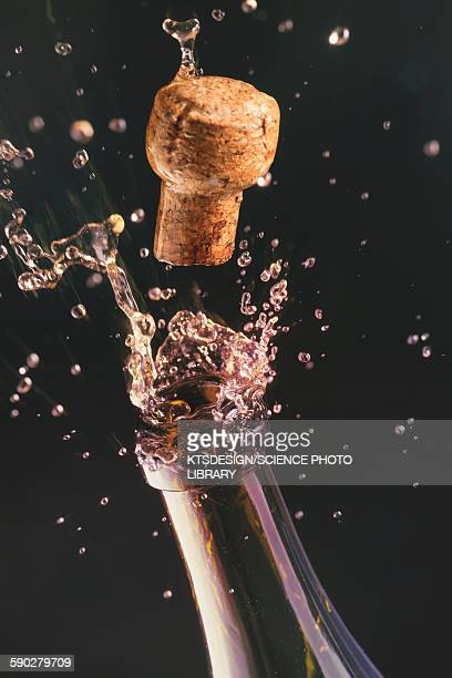 Champagne bottle and cork