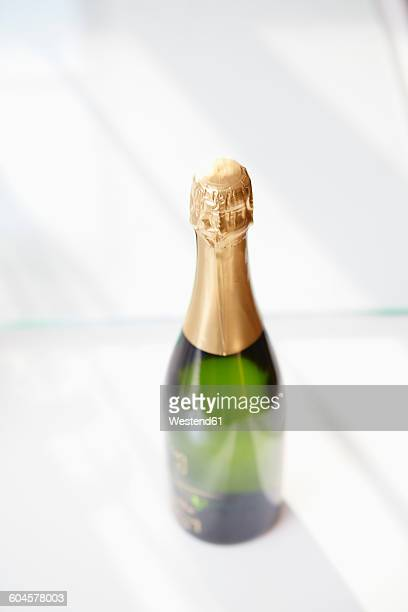 Champagne bottle on white ground