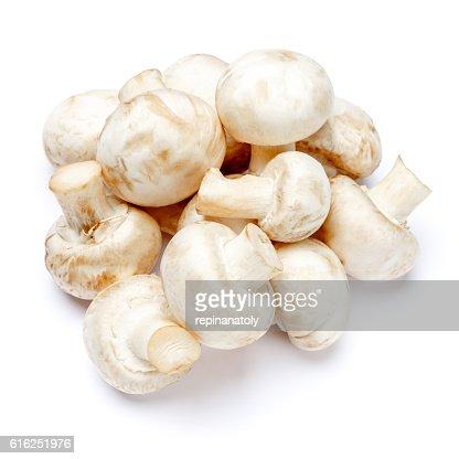 champignon mushroom isolated on white : Stock Photo