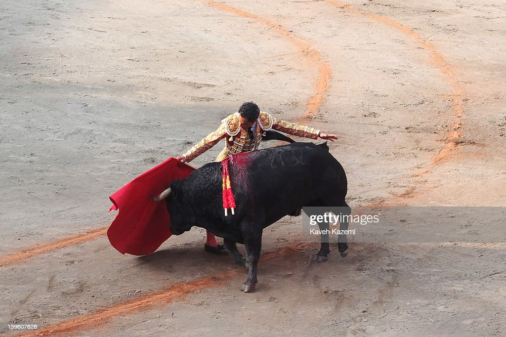 Champion Colombian bullfighter Luis Bolivar fights a bull during the annual fair on January 11, 2013 in Manizales, Colombia. The festival, is hosted in the city of Manizales in Colombia's central coffee region. Starting out as a trade fair, it has grown over the years to become one of Colombia's most important annual events.