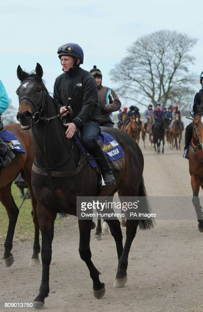 Champion Jockey Paul Hanagan on Irish Heartbeat on the gallops during a media day at Musley Bank Stables Malton North Yorkshire