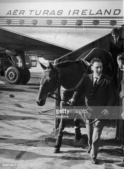 Arkle horse stock photos and pictures getty images for Show pool horse racing