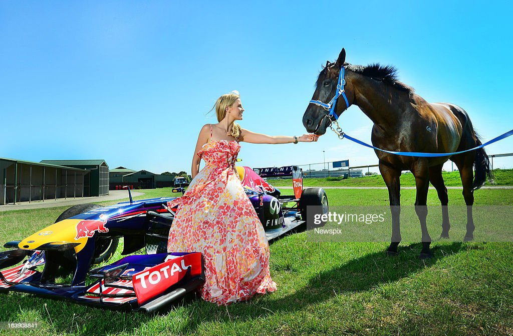 Champion racehorse 'Black Caviar' checks out the horse power of a different kind when the she was introduced to a Red Bull Formula 1 Car and the Grand Prix ambassador Chelsea Scanlan on March 12 in Melbourne, Australia.
