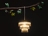 Chandelier hanging from tree branch, illuminated at night