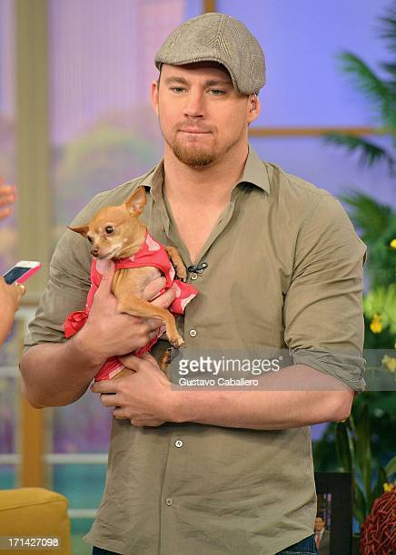 Channing Tatum appears on Univision's 'Despierta America' to promote film 'White House Down' at Univision Headquarters on June 24 2013 in Miami...