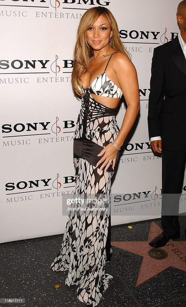 Chante Moore during Sony/BMG Music Entertainment 2005 After GRAMMY Awards Party Arrivals at Hollywood Roosevelt Hotel in Hollywood California United...