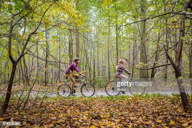 walk in the forest of Chantilly grounds of Chantilly Couple on a bike ride on a forest path in autumn