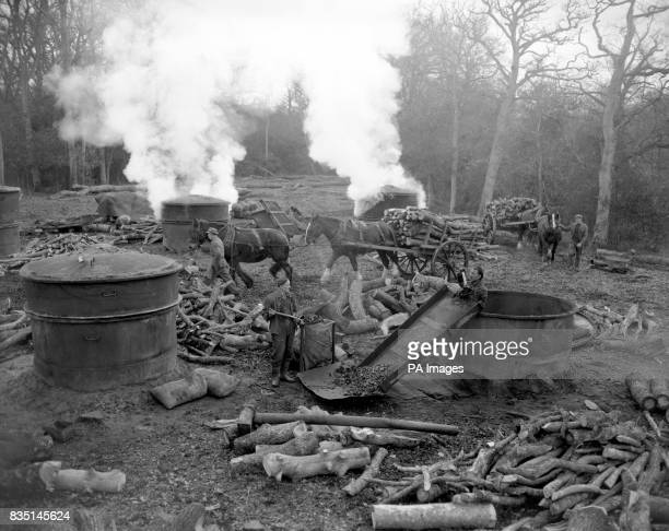 Charcoal burners Bert Richardson and Tom West emptying a kiln in King's Hat Wood near Beaulieu Hampshire as Forestry Commission men Edward and Bob...