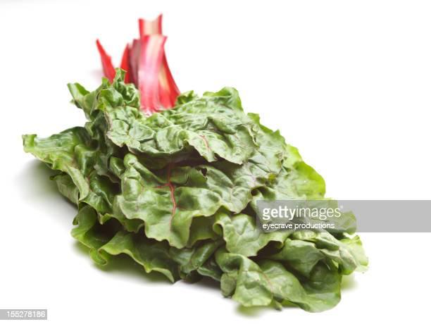 Mangold superfood organische natürliche Gemüse Gemüse