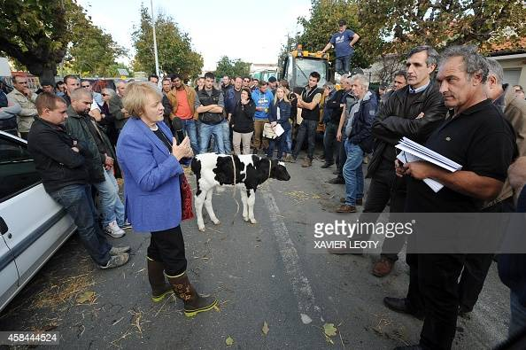 CharenteMaritime Prefect Beatrice Abollivier speaks with farmers who gave her a calf as farmers from the French farmers unions FNSEA and the JA...