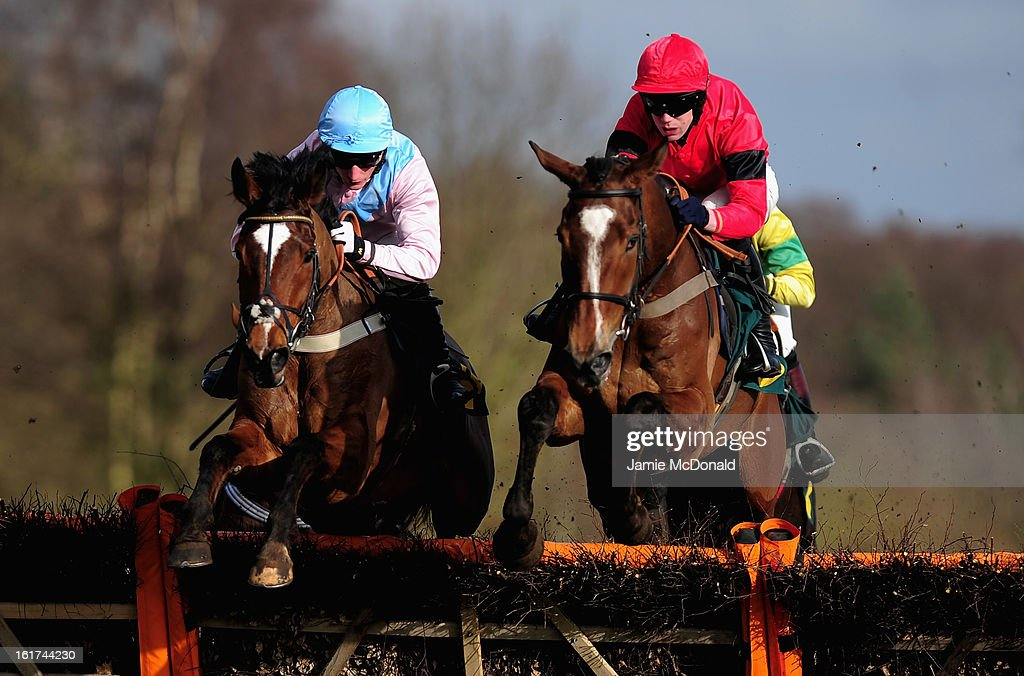 Chargen ridden by Daryl Jacobs wins the Ben Burgess (Blue Hat )Novices Handicap Hurdles Race on February 15, 2013 in Fakenham, England.