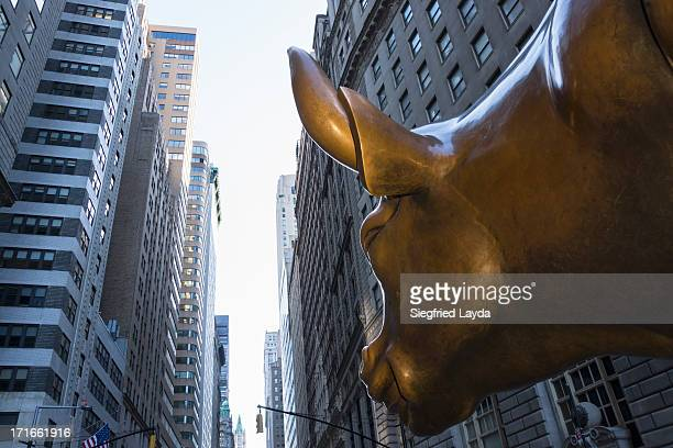 Charging Bull, Manhattan