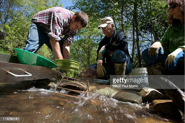 Charlene Hollingsworth John Hollingsworth both of Carl Junction Missouri and Dustin Campo of Jamestown California look for gold in Woods Creek on...