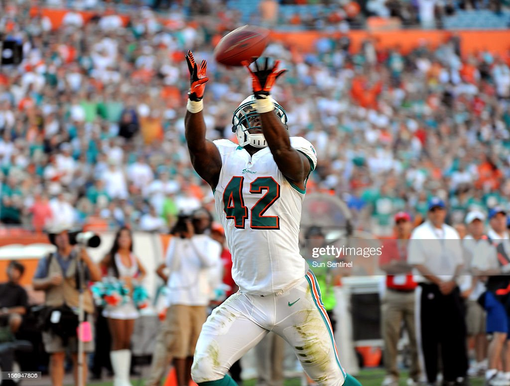 Charles Clay of the Miami Dolphins catches a touchdown in the fourth quarter against the Seattle Seahawks at Sun Life Stadium in Miami Gardens, Florida, Sunday, November 25, 2012. The Miami Dolphins beat the Seattle Seahawks, 24-21.