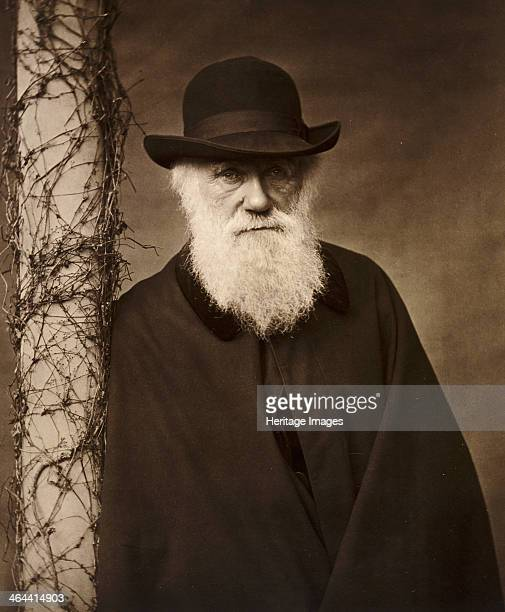 Charles Darwin at his home at Down House Kent c1880