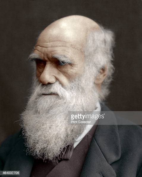 a creative letter to charles darwin an english scientist Science, technology & health  professional studies, arts & design, humanities  & social sciences, science, technology & health, foreign languages and much.