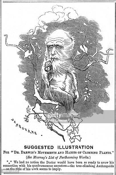 Charles Darwin English naturalist 1875 Darwin was employed as naturalist on HMS Beagle from 18311836 He first made his name as a geologist but is...