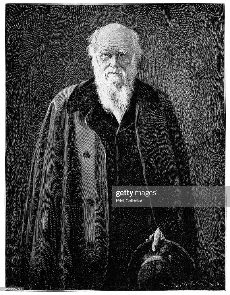 charles darwin renowned naturalist and thinker pictures charles darwin renowned naturalist and thinker 1900 darwin 1809
