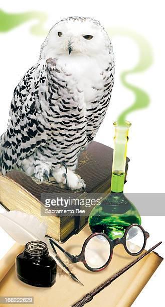 Charles Waltmire illustration of Harry Potter items owl book glasses beaker etc