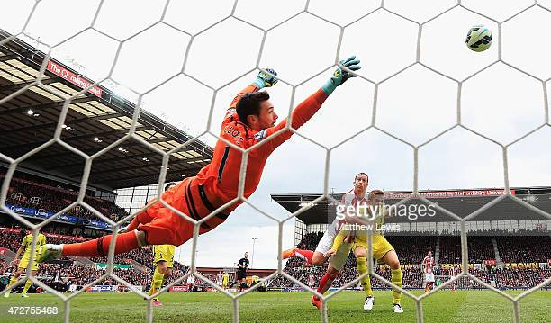 Charlie Adam of Stoke City scores the opening goal past Hugo Lloris of Tottenham Hotspur during the Barclays Premier League match between Stoke City...