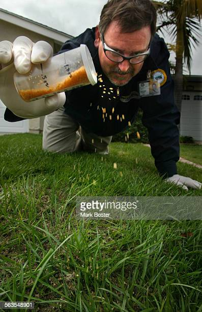 –Charlie Cassidy Field Operations Manager with the Orange County Fire Ant Authority Orange County Vector Control District spinkled a chemical called...