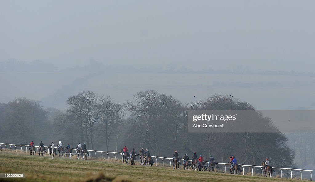 Charlie Hills' string make their way back to the stables after galloping on Lambourn gallops on March 04, 2013 in Lambourn, England.